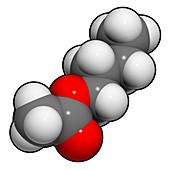 Butyl acetate molecule