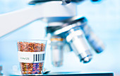 Food sample and microscope
