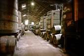 Portwein in Holzfässern im Weinkeller Niepoort, Portugal