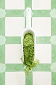 Wheatgrass powder on a porcelain scoop (seen from above)