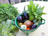 Fresh vegetables and herbs in a colander and on a garden table