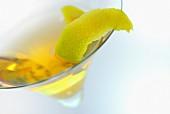 Cactus Sour cocktail with lemon zest