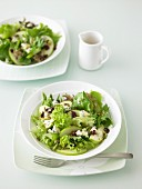 Green Apple, Blue Cheese, Cranberry & Pistachio Salad