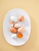 Hühnereier auf Teller, ganz und aufgeschlagen (Aufsicht)