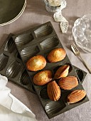 Madeleines in the baking tin