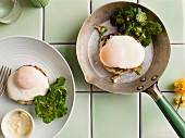 Fried eggs on vegetable fritters