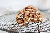 Chocolate biscuit with hazelnuts filled with quark on a wire rack