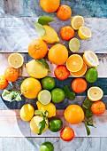 Zitrusfrüchte aufgeschnitten und ganz