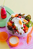 Vegetable salad with yoghurt sauce and hard-boiled egg