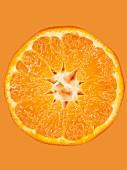 Aufgeschnittene Mandarine vor orangem Hintergrund, Close-Up