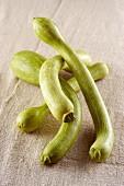 Zucchine trombetta (Italian courgette)