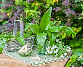 Wild garlic in a glass and a basket on a garden table