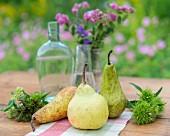 Drei verschiedene Birnen auf Gartentisch