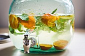 Some punch with oranges and mint in a large glass with a tap