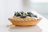 Tartellete mit Vanillecreme, Heidelbeeren, Agavensirup und Puderzucker