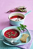 Beetroot soup with fresh vegetables in the background