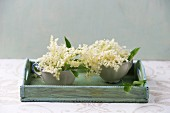 Elderflowers in cups on a wooden tray