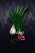 Red and white spring onions