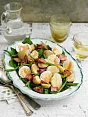 Bistro-Salat mit grünen Bohnen, Kartoffeln, Speck und Ei