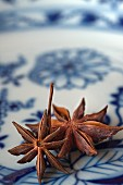 Star anise on a blue-and-white plate
