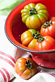 Organic tomatoes in a red colander