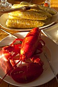 Boiled Maine lobster with steamed corn cobs (USA)