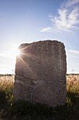 A runestone on the island of Öland in southern Sweden