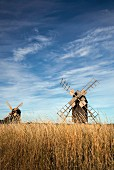 Öland, the island of windmills, southern Sweden