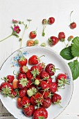 Strawberries in a porcelain bowl on a wooden surface