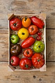 A crate of colourful tomatoes