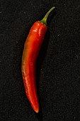 A Filomena chilli pepper