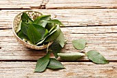 Curry leaves on a wooden surface
