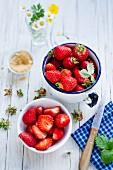 Fresh strawberries with coconut flower sugar