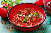 Gazpacho in roter Suppenschale