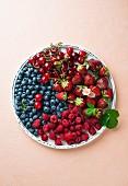 Frische Beeren und Kirschen auf Teller und farbigen Untergrund