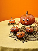 Pumpkin spiders as Halloween decoration