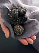 Summer truffles on a grey linen cloth
