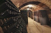 The cava wine cellar of the Sumarroca winery in El Penedes, Spain