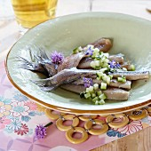 Dutch-style pickled herring with cucumber and herb flowers