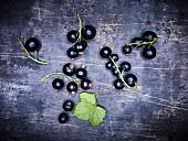 Blackcurrants on a dark surface