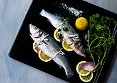 Two branzino fish stuffed with herbs, onion and lemon slices on a baking tray