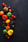 Verschiedene Tomatensorten auf schwarzem Untergrund