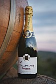 A bottle of sparkling wine from the Gramona winery (in El Penedes, Spain)