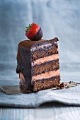 A piece of chocolate sponge cake with strawberries