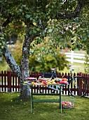 Herbstbuffet auf Holztisch im Garten