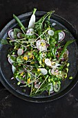 Vegan spring salad with broad beans, radishes, yarrow and edible flowers