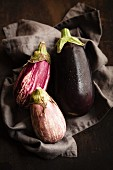 Various aubergines on a dark cloth