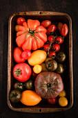 Bunte Tomaten in alter Reine