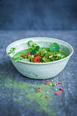A green smoothie bowl with cress, wheatgrass powder and goji berries (Superfood)