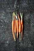 Fünf junge Karotten nebeneinander liegend auf grauem Untergrund